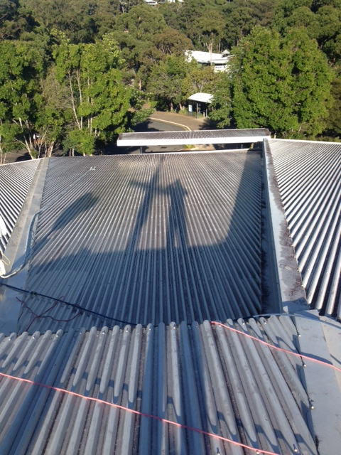 Immanuel Lutheran Church Roof Cleaning- before