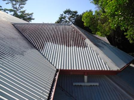 Doonan Roof Cleaning-before