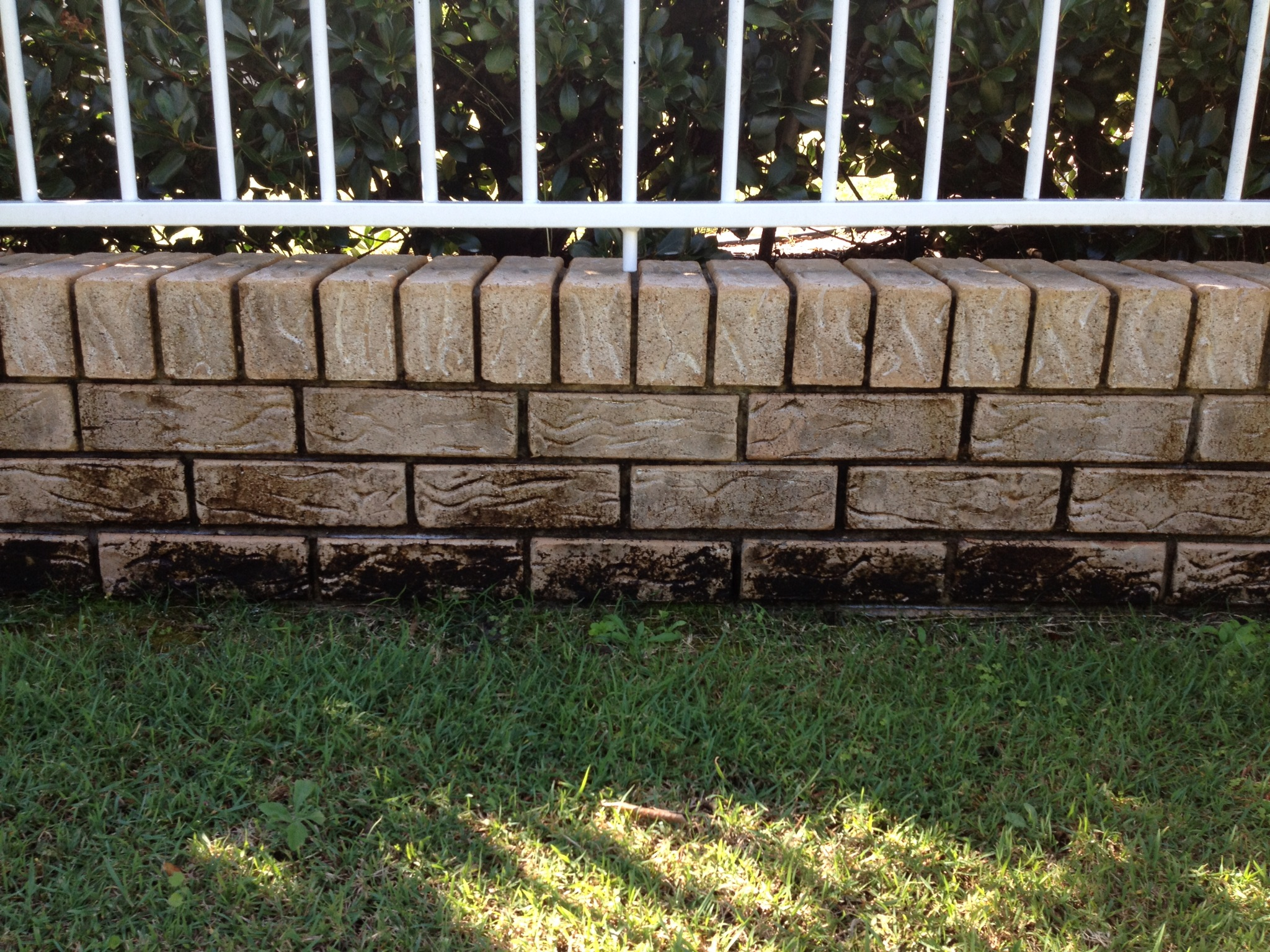 Mooloolaba Pressure clean brick wall-before