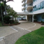 Cotton Tree driveway -before