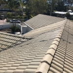 Old tile roof softwashed