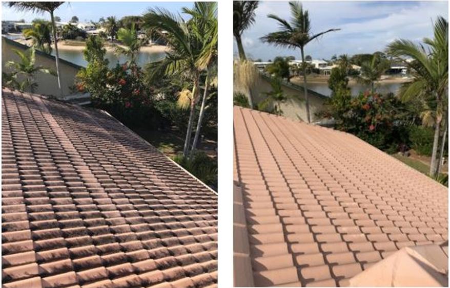 pressure clean roof
